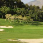 Santana Golf, Revista de Golf para Mujeres, Ladies In Golf