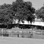 The San Roque Club, Revista de Golf para Mujeres, Ladies In Golf